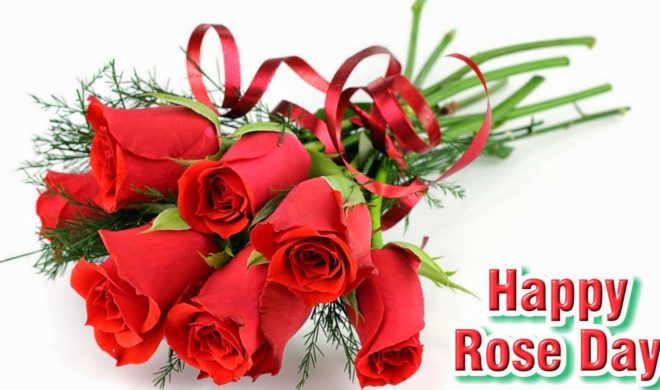 Rose day whatsapp and Facebook status messages 3
